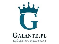 logo-pionowe