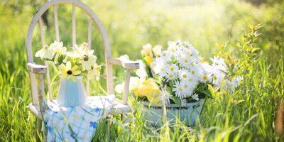 Ogrodnictwo ekologiczne – kilka prostych zasad