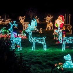 Pięknie przyozdobiony ogród w wydaniu świątecznym
